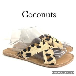 Coconuts by Matisse Pebble Leopard print 9M